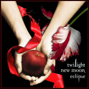 http://www.goquiz.com/upload/155f91d63807d3b8f6ba8845503b9299_Twilight_New_Moon_Eclipse_by_midnig.jpg
